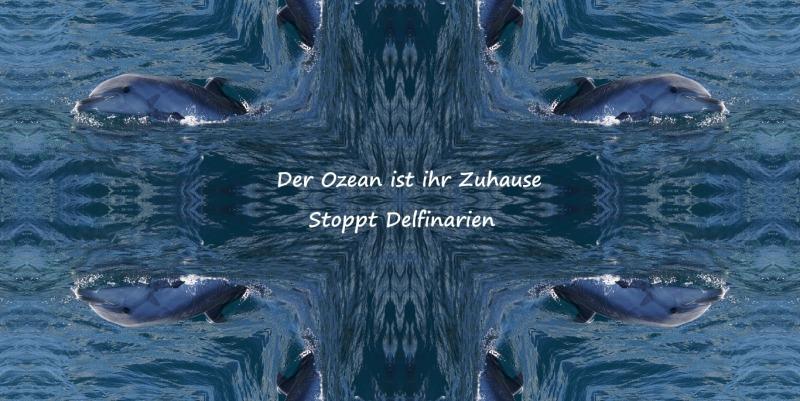 Stoppt Delfinarien (7)